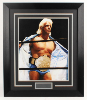 Ric Flair Signed WWE 25.75x29.75 Custom Framed Photo Display (JSA Hologram) at PristineAuction.com