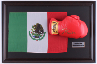 Julio Cesar Chavez Signed 17.5x26.5 Custom Framed Boxing Glove (JSA COA) at PristineAuction.com