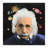 "Steve Kaufman Signed ""Einstein"" Hand Painted Limited Edition 24x24 Silkscreen on Canvas at PristineAuction.com"