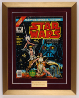 "Vintage 1977 ""Star Wars"" Issue #1 Marvel 16x20 Custom Framed Comic Book Display at PristineAuction.com"