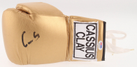Muhammad Ali Signed Cassius Clay Boxing Glove (PSA LOA) at PristineAuction.com