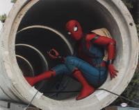 """Tom Holland Signed """"Spider-Man: Homecoming"""" 16x20 Photo (PSA COA) at PristineAuction.com"""