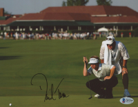 David Toms Signed 8x10 Photo (Beckett COA) at PristineAuction.com