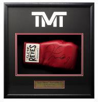 "Floyd Mayweather Jr. Signed ""TMT"" 18x19x4 Custom Framed Shadowbox Display (Beckett COA) at PristineAuction.com"