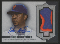 Pedro Martinez 2019 Topps Dynasty Autograph Patches Silver #APPM1 at PristineAuction.com