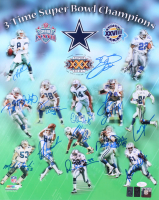 """Dallas Cowboys 16x20 Photo Team-Signed by (13) with Troy Aikman, Emmitt Smith, Michael """"Playmaker"""" Irvin, Darren Woodson, Daryl """"Moose"""" Johnston (JSA COA, Aikman & Smith Holograms) at PristineAuction.com"""