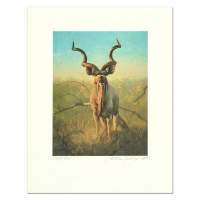 """Peter Darro Signed """"Pronghorns"""" Limited Edition 11x15 Lithograph at PristineAuction.com"""