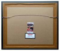 2015 Team USA World Cup 22x27 Custom Framed Photo Display Team-Signed by (11) with Alex Morgan, Carli Lloyd, Megan Rapinoe, Julie Johnston (JSA COA & TriStar Hologram) at PristineAuction.com
