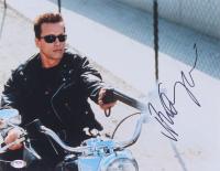 "Arnold Schwarzenegger Signed ""The Terminator"" 11x14 Photo (PSA COA) at PristineAuction.com"