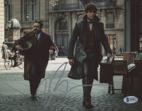 """Dan Fogler Signed """"Fantastic Beasts & Where To Find Them"""" 8x10 Photo (Beckett COA) at PristineAuction.com"""