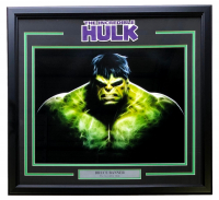 The Incredible Hulk - Bruce Banner 22x29 Custom Framed Photo Display at PristineAuction.com