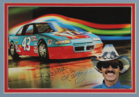 Richard Petty Signed 15x27 Custom Framed Photo Display (JSA COA) at PristineAuction.com