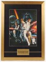 """Star Wars: Episode IV - A New Hope"" 16.5x22 Custom Framed Print Display at PristineAuction.com"