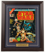 "Vintage 1977 ""Star Wars"" Issue #1 Marvel 16.5x19.5 Custom Framed Comic Book Display at PristineAuction.com"