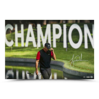 Tiger Woods Signed 16x24 LE Photo (UDA COA) at PristineAuction.com