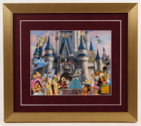 Disney 15x17 Custom Framed Pin Set Display at PristineAuction.com