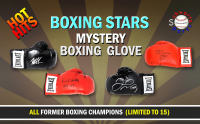 Schwartz Sports - Hot Hits Boxing Stars Signed Boxing Glove Mystery Box – Series 4 (Limited to 15) at PristineAuction.com