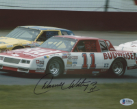 Darrell Waltrip Signed NASCAR 8x10 Photo (Beckett COA) at PristineAuction.com