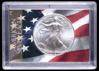 2019 American Silver Eagle $1 One Dollar Coin with U.S. Flag Holder at PristineAuction.com
