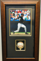 Michael Jordan Signed 16x26 Custom Framed Baseball Display (UDA Hologram) at PristineAuction.com