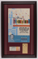 Disneyland 17.5x27.5 Custom Framed Print Display with Parking Pass & Ticket Booklet at PristineAuction.com