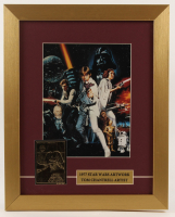 """""""Star Wars Episode IV: A New Hope"""" 13x16 Custom Framed Tom Chantrell Print Display with 23 KT Gold Card at PristineAuction.com"""