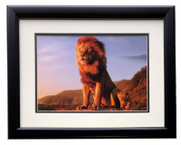 "Mufasa & Young Simba ""The Lion King"" 16x18 Custom Framed Photo at PristineAuction.com"