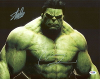 """Stan Lee & Mark Ruffalo Signed """"The Hulk"""" 11x14 Photo (PSA COA) at PristineAuction.com"""