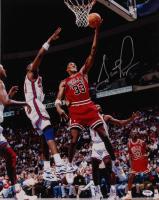 Scottie Pippen Signed Bulls 16x20 Photo (PSA COA) at PristineAuction.com