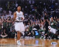 Ray Allen Signed Celtics 8x10 Photo (Beckett COA) at PristineAuction.com