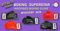 Schwartz Sports EXTREME ODDS - Boxing Superstars Signed INSCRIBED Boxing Glove Mystery Box –Series 1 (Limited to 25) at PristineAuction.com