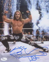 Shawn Michaels Signed WWE 8x10 Photo (JSA COA) at PristineAuction.com