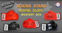 Schwartz Sports Boxing Stars Signed Boxing Glove Mystery Box – EXTREME ODDS Series 1 (Limited to 25) at PristineAuction.com