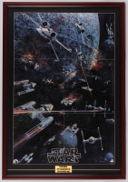 "1977 Original Promotional ""Star Wars: Episode IV -  A New Hope"" 24.5x36 Custom Framed Vintage Record LP Movie Poster Insert at PristineAuction.com"