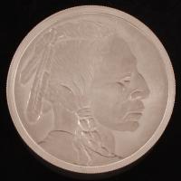 One Pound Titanium .999 Fine Buffalo Nickel Indian Design Bullion Round at PristineAuction.com
