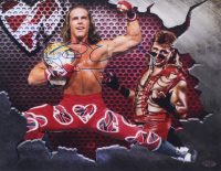 "Shawn Michaels Signed WWE 11x14 Photo Inscribed ""HBK"" (Playball Ink Hologram) at PristineAuction.com"