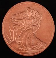 1 Pound .999 Fine Copper 2013 Walking Liberty Bullion Round at PristineAuction.com