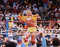 Hulk Hogan Signed 16x20 Photo (COJO COA) at PristineAuction.com