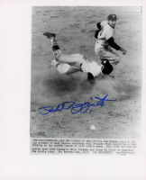 Phil Rizzuto Signed Yankees 8x10 Photo (PSA COA) at PristineAuction.com