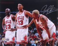 Dennis Rodman Signed Bulls 16x20 Photo (Schwartz Sports COA) at PristineAuction.com