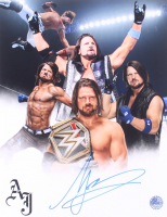 A.J. Hawks Signed WWE 11x14 Photo (Pro Player Hologram) at PristineAuction.com