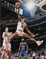 Dennis Rodman Signed Bulls 16x20 Photo (Beckett COA) at PristineAuction.com