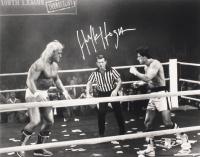 Hulk Hogan Signed WWE 16x20 (TSE COA & PSA Hologram) at PristineAuction.com