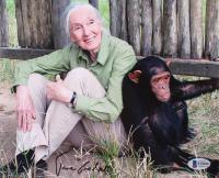 Jane Goodall Signed 8x10 Photo (Beckett COA) at PristineAuction.com