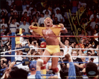 Hulk Hogan Signed Hulkamania 8x10 Photo (Schwartz COA) at PristineAuction.com