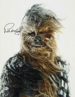 "Peter Mayhew Signed ""Star Wars: Episode IV - A New Hope"" 16x20 Photo (Beckett COA) at PristineAuction.com"