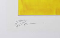 "Tom Hodges - The Mandalorian - ""Star Wars"" - Signed 11"" x 17"" Print (PA COA) at PristineAuction.com"