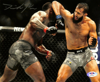 Dominick Reyes Signed UFC 8x10 Photo (PSA Hologram) at PristineAuction.com