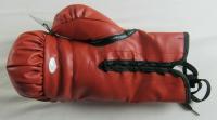 Mike Tyson Signed Everlast Boxing Glove (JSA Hologram) at PristineAuction.com