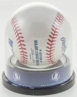 Eddie Vedder Signed OML Baseball (BGS Encapsulated) at PristineAuction.com